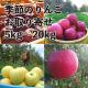 長野県産りんごの産地直送